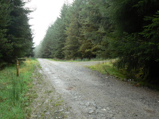 Innellan, Forest Track Junction