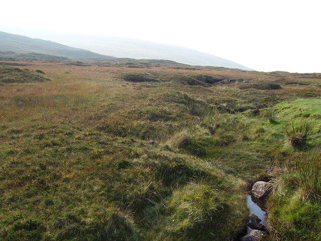 A Trotternish bog