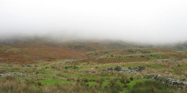 The Treforus Link  Track