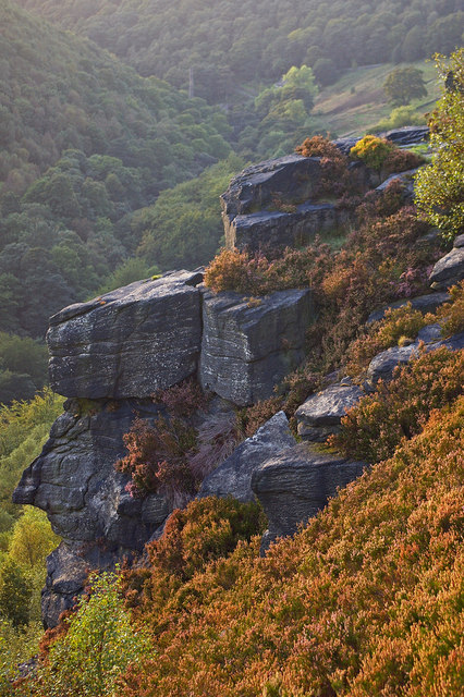 Millstone grit outcrop above the Colden Valley