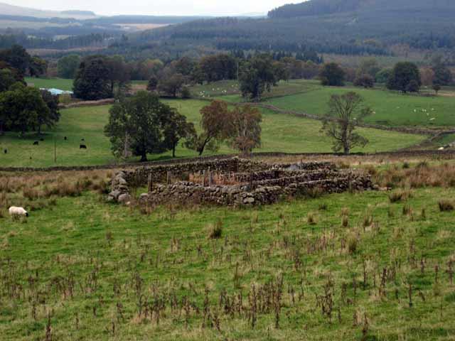 Sheepfold in the Glenkens