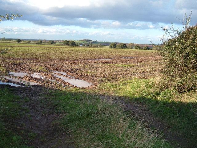 Fieldclose to Sturton High House
