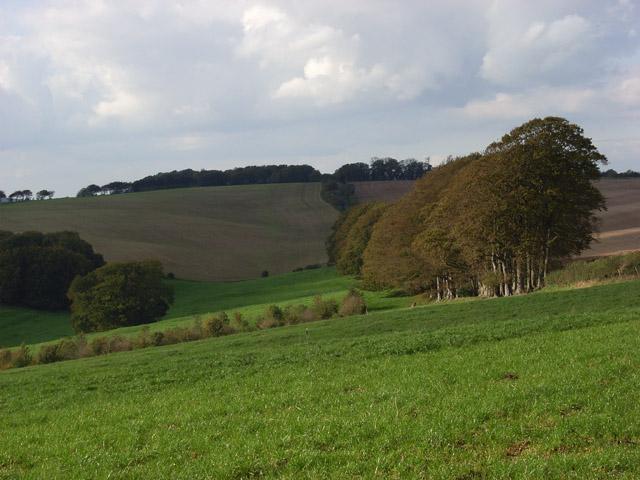 Farmland, Baydon