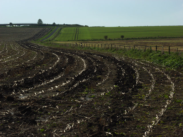 Farmland, Russley
