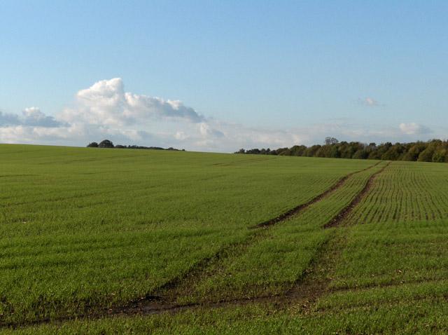 Farmland between Baydon and Wanborough