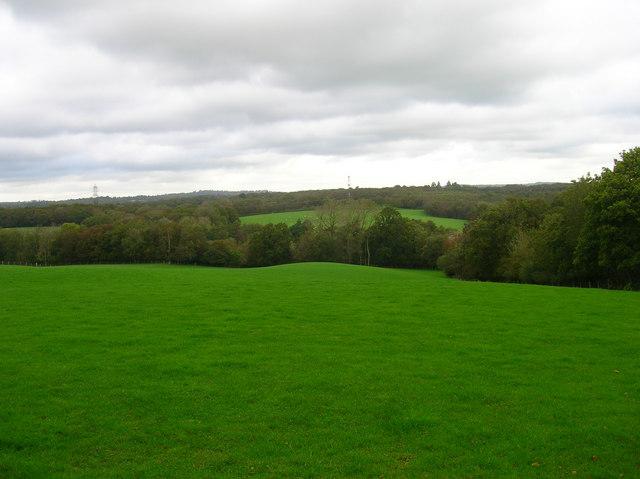 Field opposite Broomfield Farm