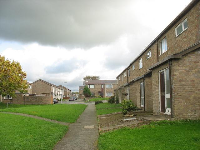 Houses on the Cae Ymryson Estate