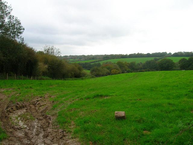 Wealden Landscape near Waldron