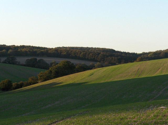 Farmland near Axford