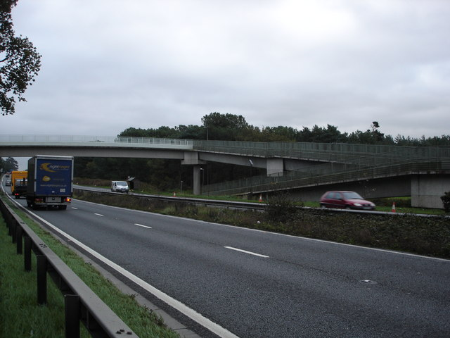Footbridge over A31