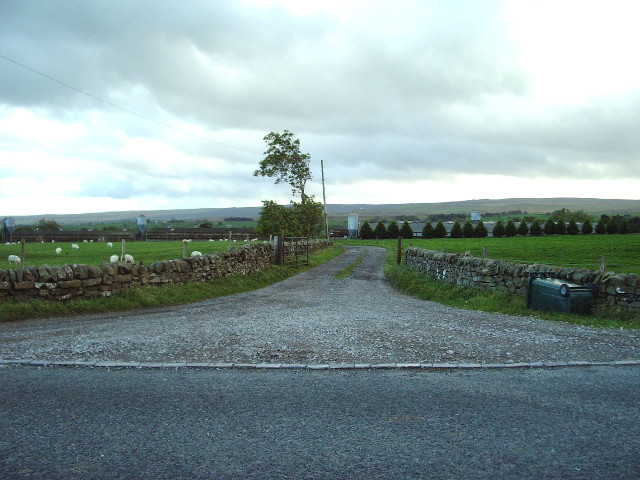 The Road to Myre Keld Farm