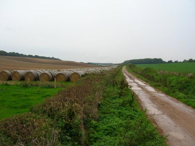 Looking down Grange Farm track
