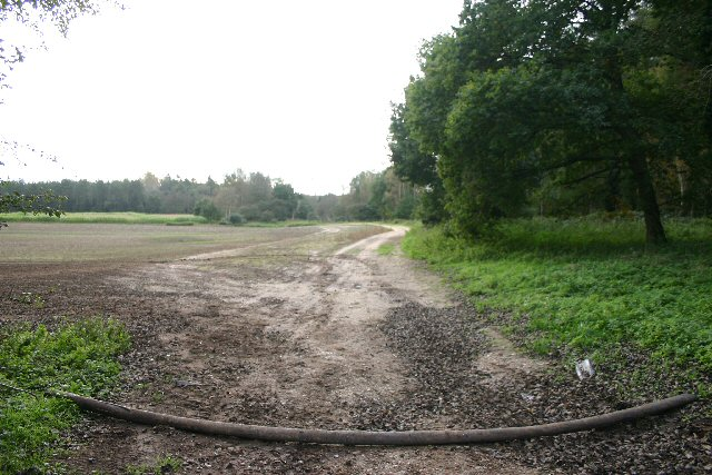 Barred track