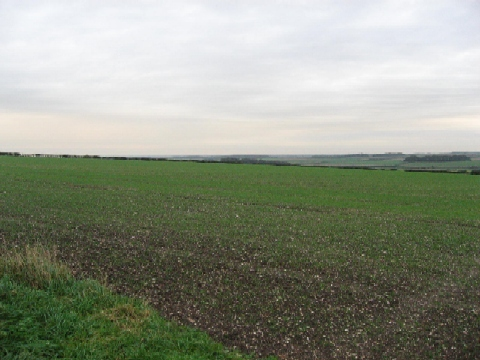 The End Of The Wolds