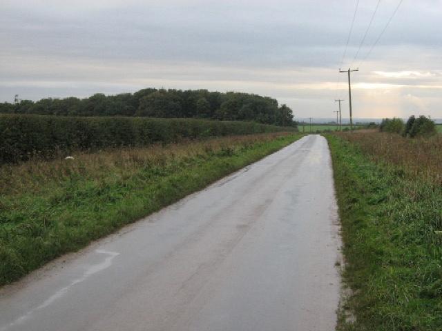The Road Across Goodmanham Wold