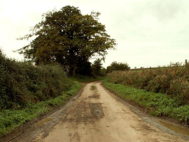 Lane to Peyton Hall