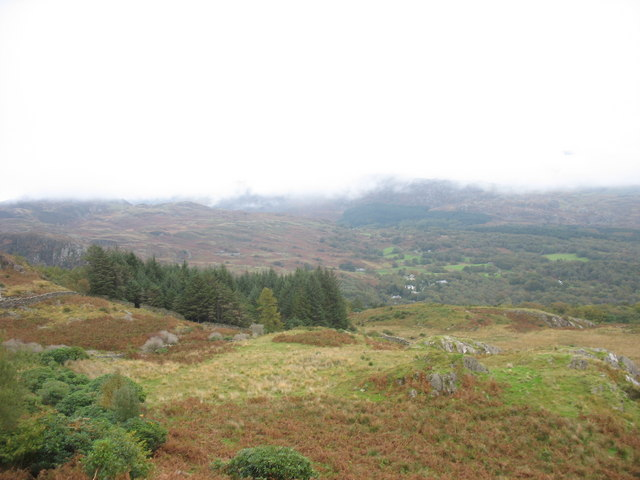 The top of Coed Aberglaslyn Wood from the Oerddwr-uchaf path