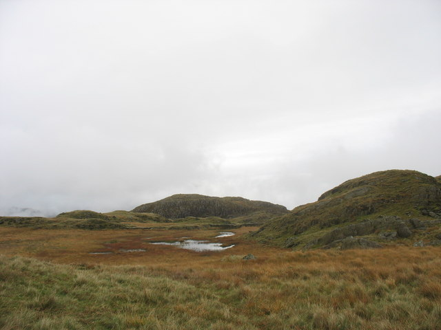 The remnants of Llyn Oerddwr