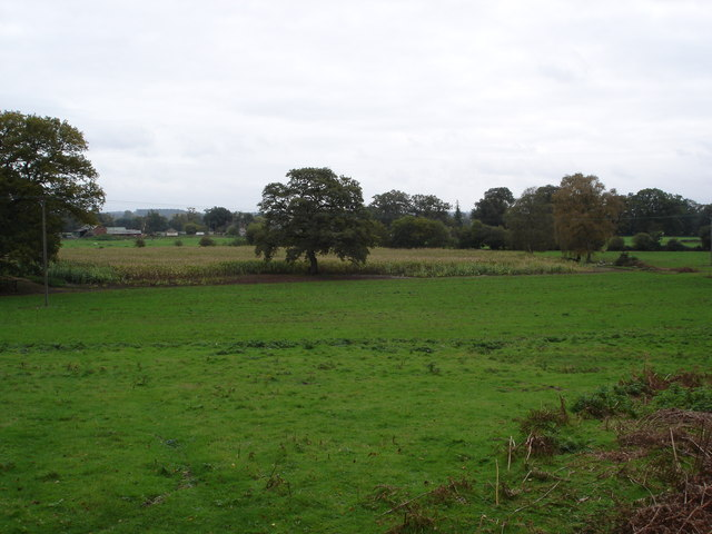 Pasture Land looking towards Turmer