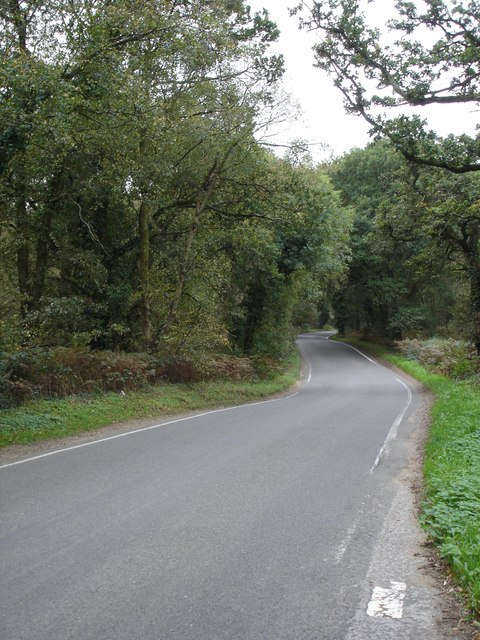 Road from Alderholt to Ringwood