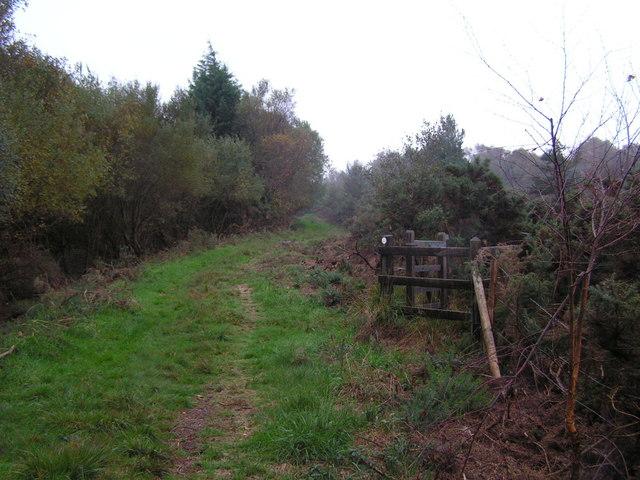 Footpath across Stoborough Heath