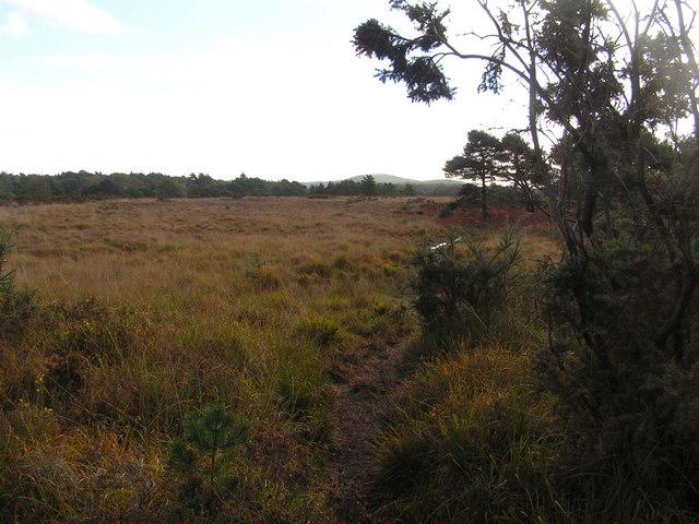 Norden Heath