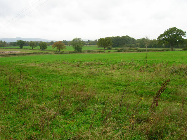 Farmland near Claylands Farm