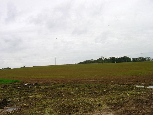 Farmland, Lock Farm