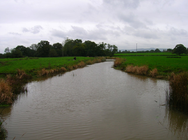 River Adur South of Locks Bridge