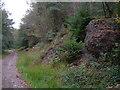 SX5358 : Evidence of mining in Boringdon Park Wood by Derek Harper