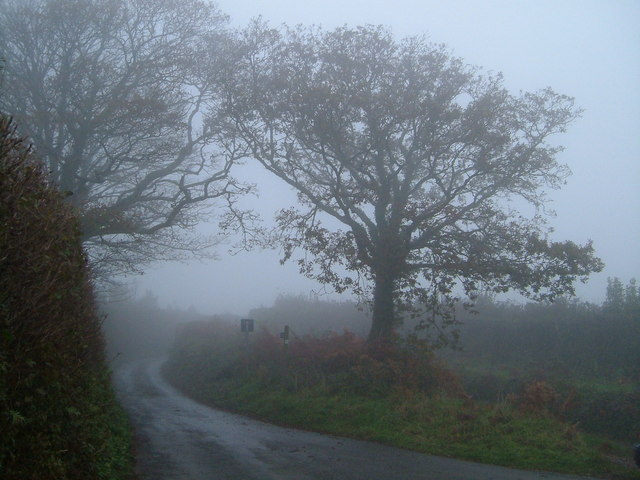 Cross lanes in the mist