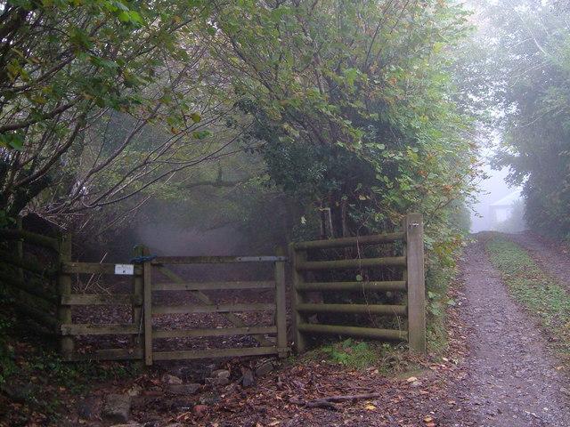 Headon Gate