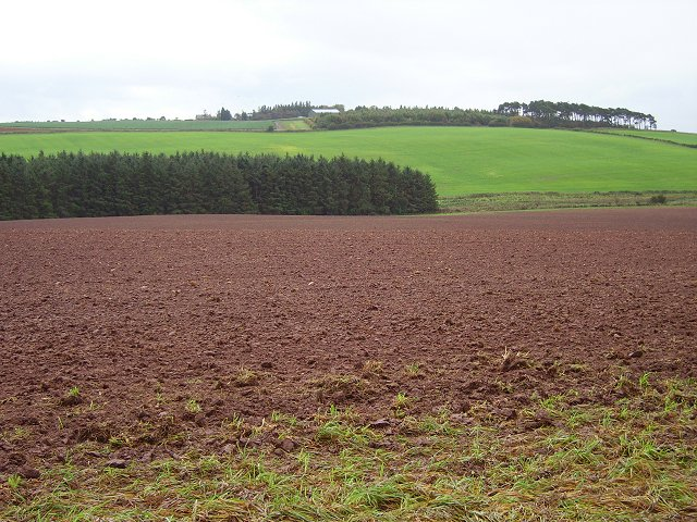 Newly ploughed field.