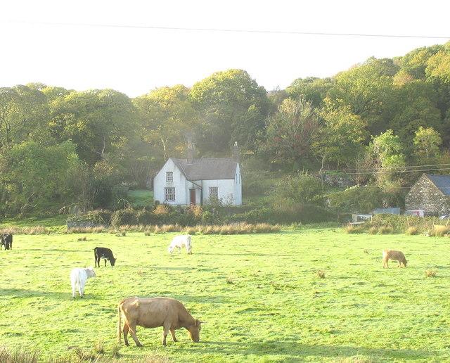 Llwyncoed Farm