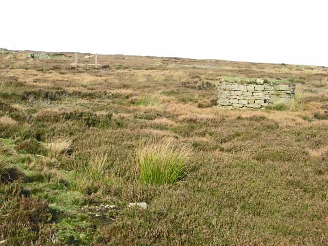 Shooting butts on the moors above Wolsingham