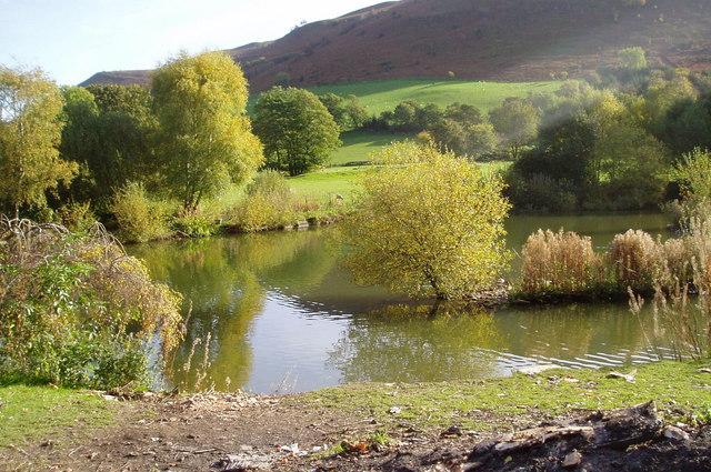 Pond, near Gyndyfrdwy