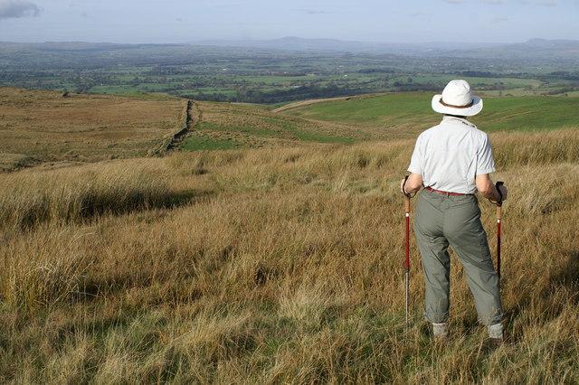 Rimington Moor