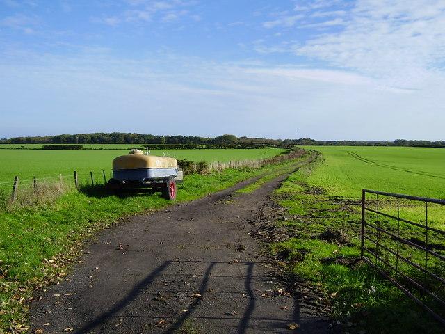 Footpath south of Ulgham Fence