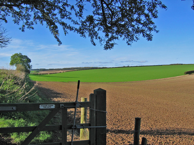 Farmland Near Low Wood