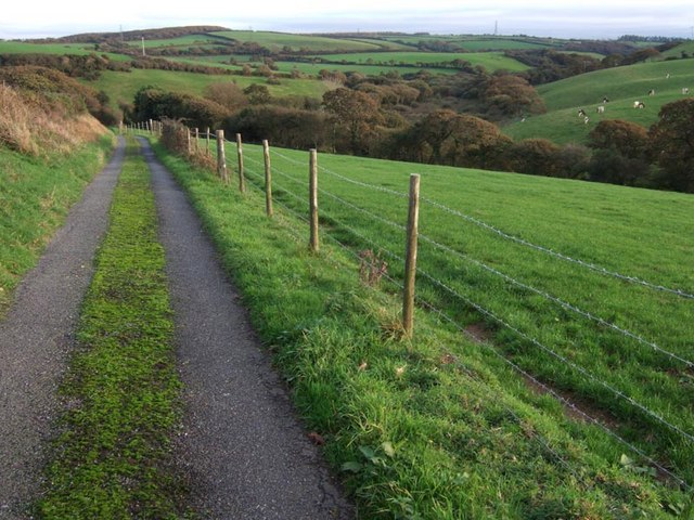 Boswellick farm pasture