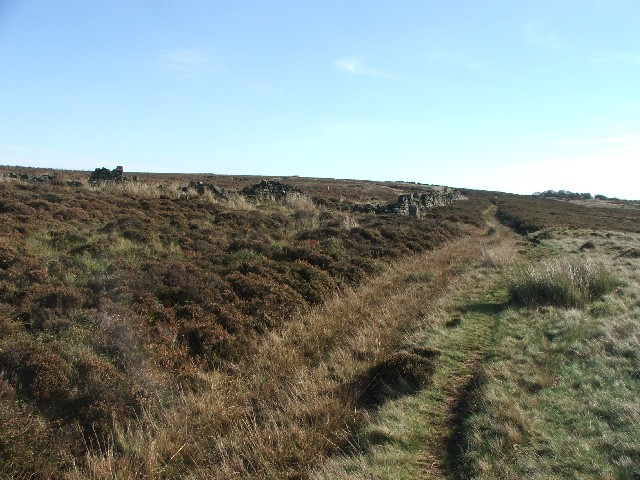 Drystone Wall on Scotland Hill.