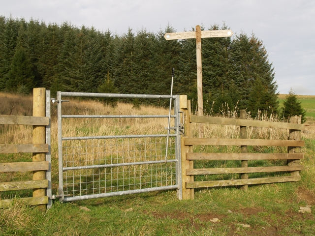 Signpost and gate, Cloich Forest.