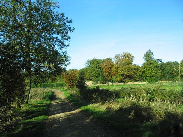 Bridleway leaving the Blatherwycke-Bulwick road