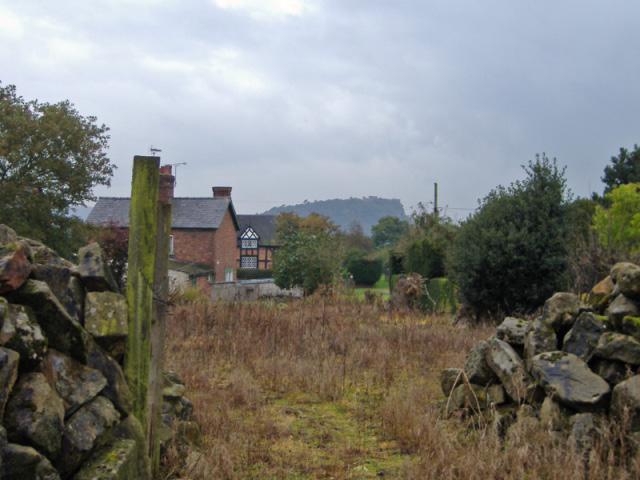 View from Tiverton footpath 3