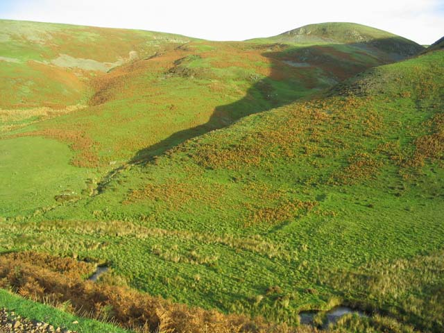 Scowther Knowe in the Cheviot Hills