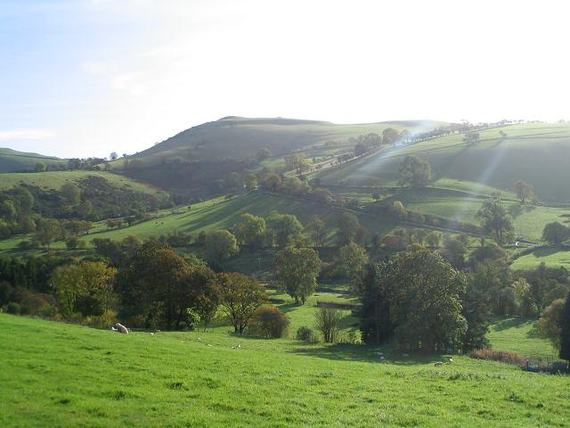 Hillside in the Ceiriog valley