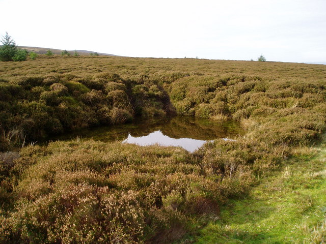 Pool in the heather
