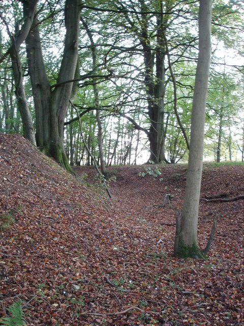 Ditch and Bank in Caesar's Camp, West edge