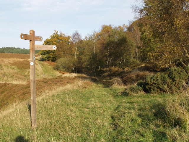 Track junction, near Fairydean Burn