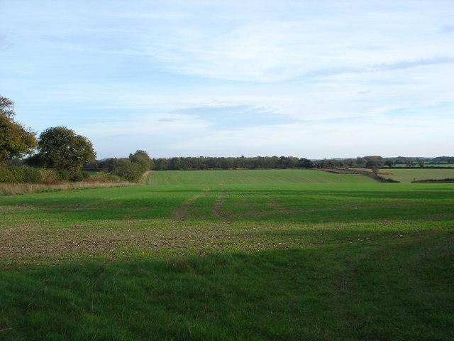 Farmland near Caesar's Camp